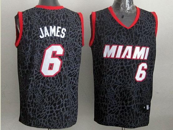 Mens Nba Miami Heat #6 James Black Leopard Grain Jersey