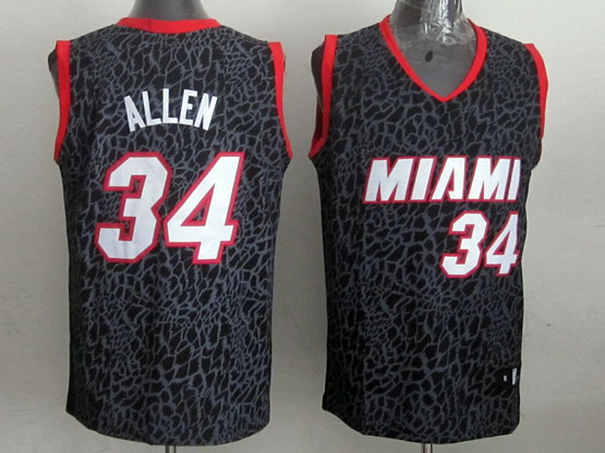 Mens Nba Miami Heat #34 Allen Black Leopard Grain Jersey