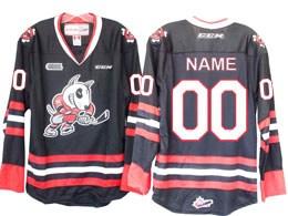 Mens Ahl Niagara Ice Dogs Custom Made Black Ccm Jersey